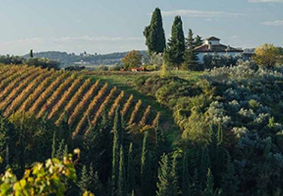 Slow Down & Savour - Life in the Chianti Yoga Retreat