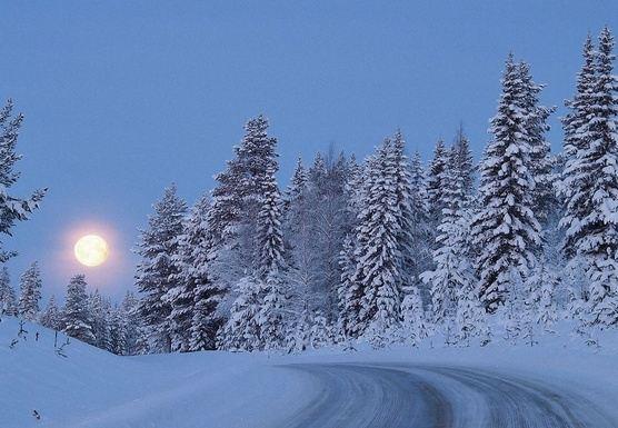Nordic & Lunar Aerial Yoga  Retreat