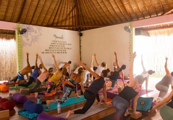200 Hrs Hatha/Vinyasa Yoga Teacher Training - Nov 2020
