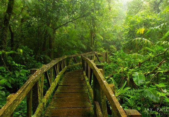 Mindfulness & Adventure Retreat in Nicaragua