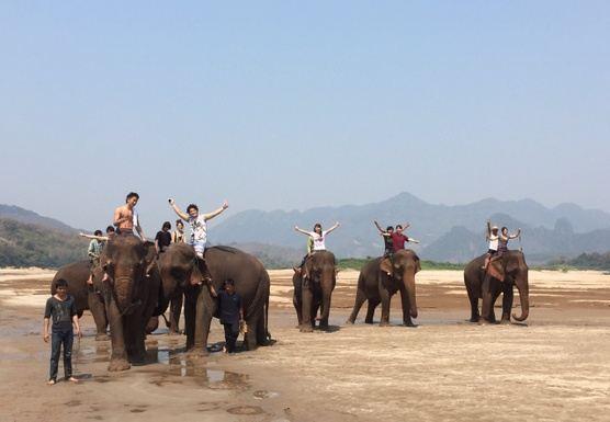 F24 Full day Kuang Si Waterfalls & Sunset Cruise & Elephant Mahout