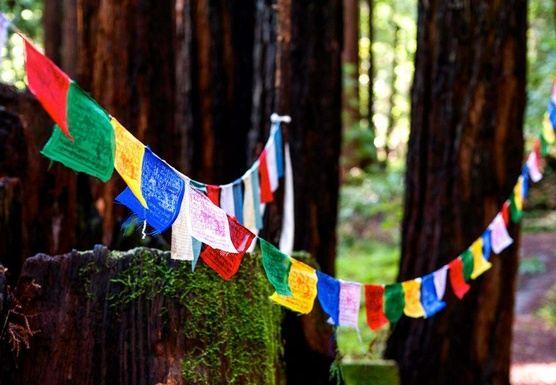 New Year Yoga Retreat 2020