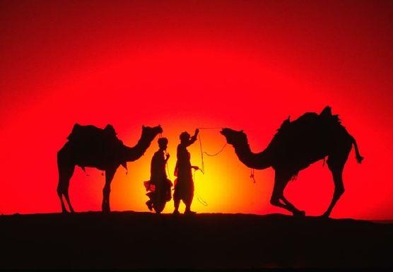 The Pernebo's Moroccan Journey - April 2019 - HN