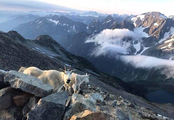 7 Day 2019 Mountain Yogini: Yoga Backpacking Pilgrimage