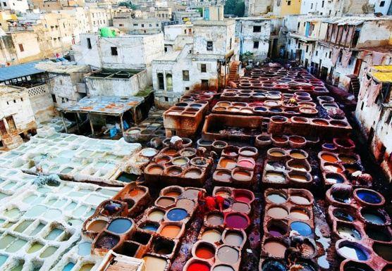 Elizabeth M - Morocco Trip - January 2020 - RT