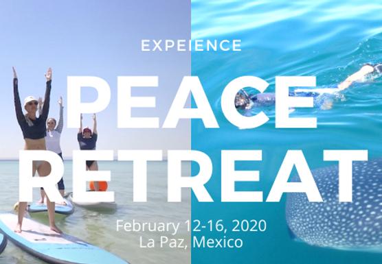 Peace Retreat La Paz 2020