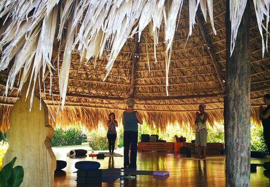 15 days 200-Hours Vinyasa, Yin, & Trauma Sensitive Yoga Teacher Traini