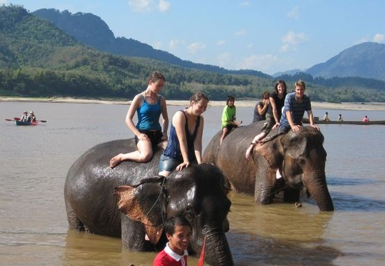 F03 – FULL DAY – MAHOUT INTRODUCTION TRAINING PROGRAM . KUANG SI WATER