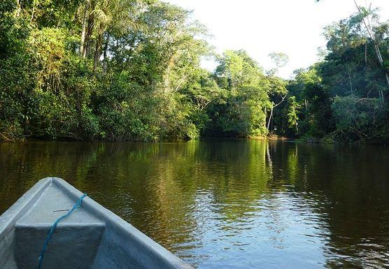 Amazon Jungle Trip-Cuyabeno