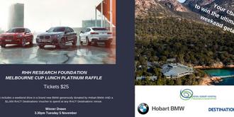 2019 RHH Research Foundation Platinum Raffle