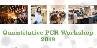 Quantitative PCR Workshop