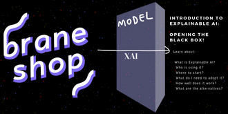 Braneshop - Introduction to Explainable AI: Opening the black box!
