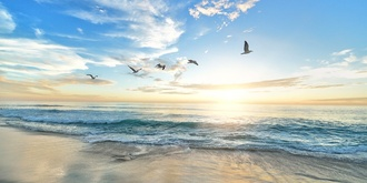 Weekly Mindfulness Meditation in Mordialloc