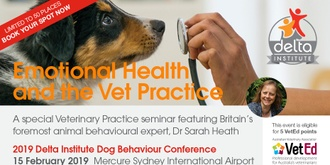 Emotional Health and the Vet Practice