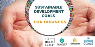 Understanding Sustainable Development Goals for Business