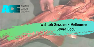 Wet Lab Session - Lower Body  (Melbourne)