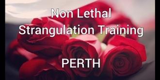 Non Lethal Strangulation Prevention Training