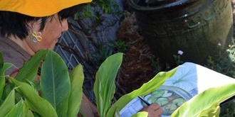 Drawing and Watercolour Workshop in Edible Garden