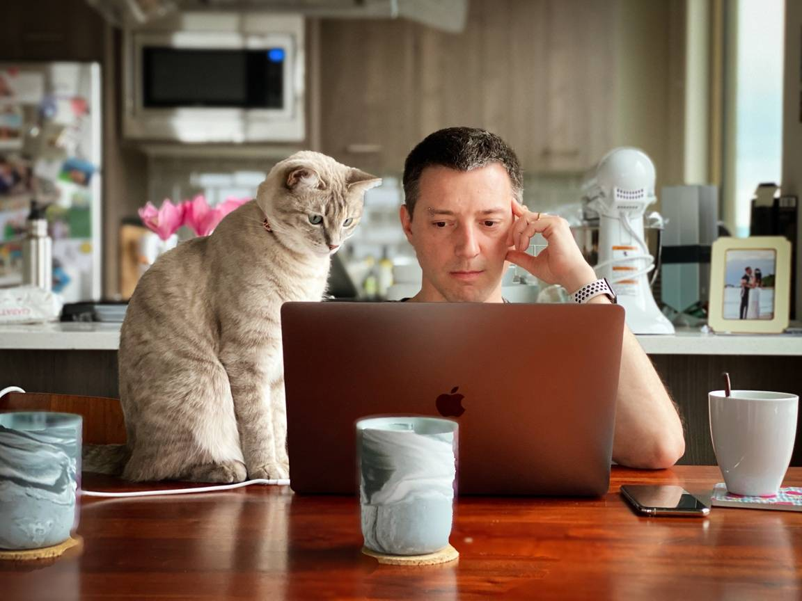 How the COVID-19 Pandemic Could Lead to a More Pet-Friendly Workplace thumbnail image