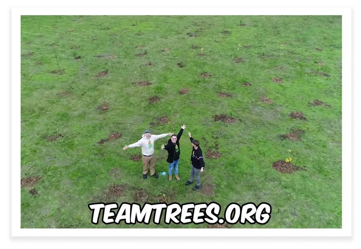 TeamTrees.org