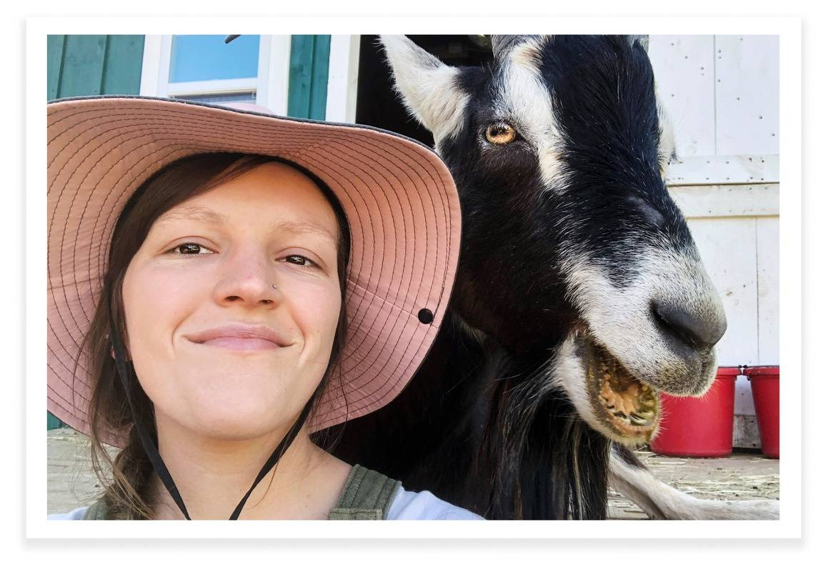 Ellen Thomas and one of her many furry friends at the Goats of Anarchy farm animal sanctuary