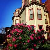 Linden Resident House