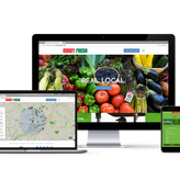 State Government Website Development