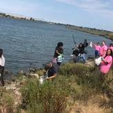 Shoreline cleanups