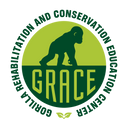 Logo of Gorilla Rehabilitation and Conservation Education (GRACE) Center