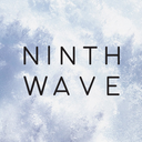 Logo de The Ninth Wave Global