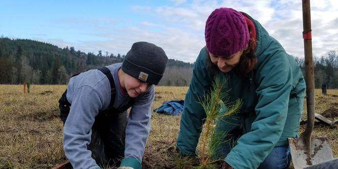 Nisqually Watershed Restoration Work Parties