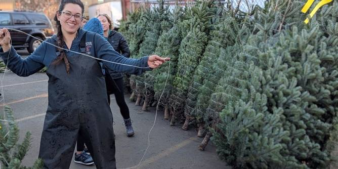 Volunteer at the L'Arche Portland Christmas Tree Sale
