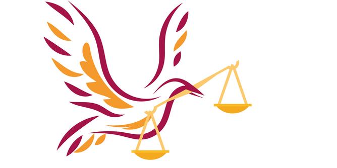 Human Rights Advocate (Volunteer)
