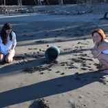 We believe that babyturtles releasing is one of the most amazing experience that someone may take in life.