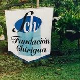 """Fundacion Chirigua. Organismo no gubernamental, sin  ánimo de lucro, constituida como Entidad Prestadora de Servicios de Extensión Agropecuaria , -EPSEA, - acreditada por la Agencia de Desarrollo Rural, entidad adscrita al Ministerio de Agricultura y Desarrollo Rural, de Colombia, para operar en todo el territorio nacional, (Registro Único Nacional de EPSEA's), registrada como Organización Gestora Acompañante (OGA), Proyecto """"Apoyo a Alianzas Productivas"""", y por la Secretaría  de Desarrollo Económico del Departamento de la Guajira. Esta Ong, está registrada en la Cámara de Comercio de Riohacha bajo el número 254, y radicada en la DIAN con el Nit 825.000.414-9. Somos una ONG  local con presencia a largo plazo en el Departamento de la Guajira y la Región Caribe Colombiana. La organización está trabajando en la zona desde 1.997, es muy bien conocida y aceptada por la gente de la región."""