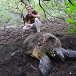 Eastern Pacific Hawksbill Sea Turtles is one of the most endangered sea turtle population around the world