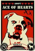 Logo of Ace of Hearts Dog Rescue