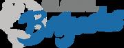 Logo of Global Brigades, Inc.