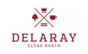 Delaray logo