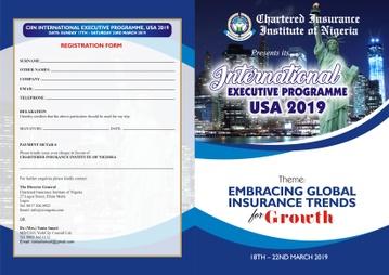 CIIN, INTERNATIONAL EXECUTIVE PROGRAM